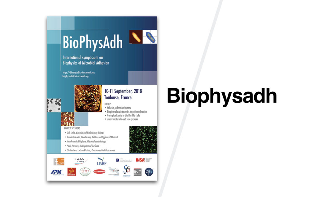 BioPhysAdh International Symposium