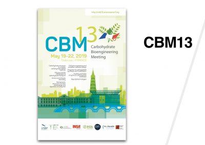 CBM13 – Carbohydrate Bioengineering Meeting – Toulouse 2019