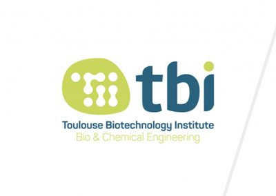 Communication globale  | TBI (ex. LISBP)